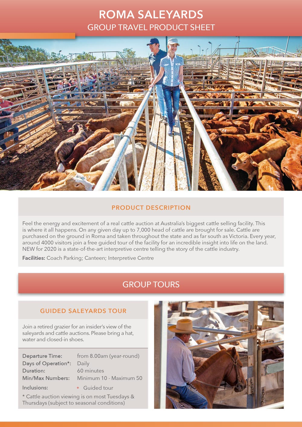 Roma Saleyards product sheet preview